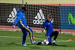 Spainsh David de Gea  during the training of the spanish national football team in the city of football of Las Rozas in Madrid, Spain. November 08, 2016. (ALTERPHOTOS/Rodrigo Jimenez)