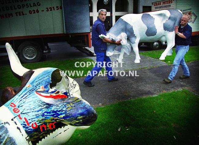 Arnhem , 050600 Foto : Koos Groenewold / APA<br />In totaal staan er vanaf 1 juni 28 `kunstkoeien ` in Arnhem. Allen beschilderd door anderen kunstenaars als Marte Roling . Rob Scholte ,en Bennie Jolink . Het is 1 van de activiteiten die hoort bij Euro 2000 . De koeien stonden onder andere in de binnenstad , maar daar werden ze weggehaald omdat 9 van de 10 koeien werd gesloopt door vandalen . Dat betekent veel goeds voor volgende week als de eerste wedstrijd in Arnhem wordt gespeeld... Op de foto is te zien hoe verhuizers de koeien langs de singels plaatsen. Ze staan daar goed in het zicht en kunnen gemakkelijker 24 uur per dag bewaakt worden.