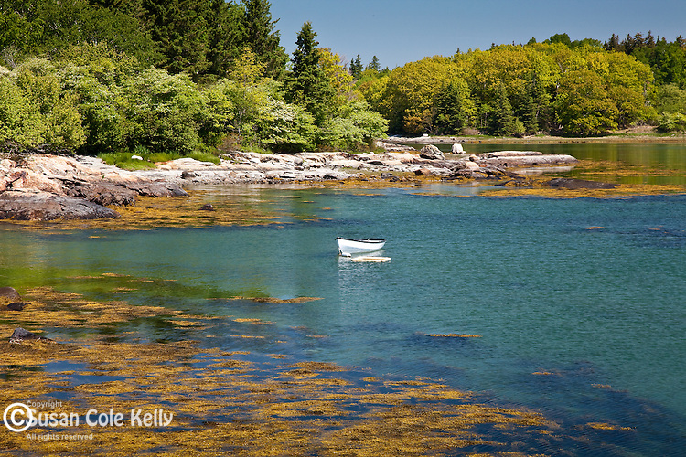 The blue water of Eggemoggin Reach, Deer Isle, ME, USA