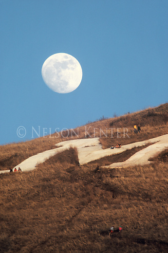 The full near moon rises above the M trail and the hikers on Mount Sentinel in Missoula, Montana