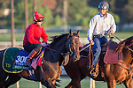 OCT 29 2014:Brown Panther, trained by Tom Dascombe, exercises in preparation for the Breeders' Cup Turf at Santa Anita Race Course in Arcadia, California on October 29, 2014. Kazushi Ishida/ESW/CSM