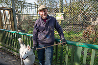 Pictured: Co-owner dean Tweedy with Alsatian Husky dog Benji standing outside the lynx enclosure at Borth Wild Animal Kingdom (formerly Borth Animalarium) , Ceredigion Wales UK. Monday 30 October 2017<br /> Re: The search continues for Lillith, a juvenile European Lynx, (latin name Lynx Lynx) which escaped from its enclosure at Both Wild Animal Kingdom.  A police helicopter with thermal imaging cameras spotted the animal  in undergrowth near the zoo in the  3early evening yesterday, raising hopes that the creature has gone to ground close to its home