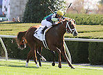 Bridgetown and Javier Castellano win the 16th running of the Woodford Grade 3 $150,000 at Keeneland Racecourse for owner Melnyk Racing and trainer Todd Pletcher..  October 6, 2012.