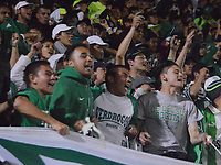 TUNJA - COLOMBIA, 1-04-2018: Hinchas de Atlético Nacional durante partido por la fecha 12 de la Liga Águila I 2018 jugado en el estadio La Independencia de la ciudad de Tunja. / Fans of Atletico Nacional agaisnt Boyaca Chico during match for the date 12 of the Aguila League I 2018 at La Independencia  stadium in Tunja city. Photo: VizzorImage / José Miguel Palencia / Contribuidor