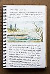 Skagit Estuary, Journal Art 2004