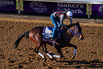 November 3, 2020: Simply Ravishing, trained by trainer Kenneth G. McPeek, exercises in preparation for the Breeders' Cup Juvenile Fillies at Keeneland Racetrack in Lexington, Kentucky on November 3, 2020. John Voorhees/Eclipse Sportswire/Breeders Cup/CSM
