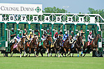 19 June 2010:  . Breaking from the gate in the All Along Stakes (III) at Colonial Downs in New Kent, Va. Shared Account is owned by Sagamore Farm, trained by H. Graham Motion