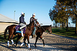 November 3, 2020: Rombauer, trained by trainer Michael W. McCarthy, exercises in preparation for the Breeders' Cup Juvenile at Keeneland Racetrack in Lexington, Kentucky on November 3, 2020. Alex Evers/Eclipse Sportswire/Breeders Cup