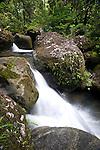 Waterfall in lowland Rainforest. Masoala NP, NE Madagascar.