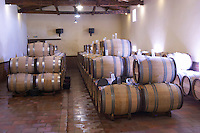 barrels with fermenting wine chateau guiraud sauternes bordeaux france
