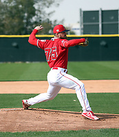 Jared Walsh - Los Angeles Angels 2019 spring training (Bill Mitchell)