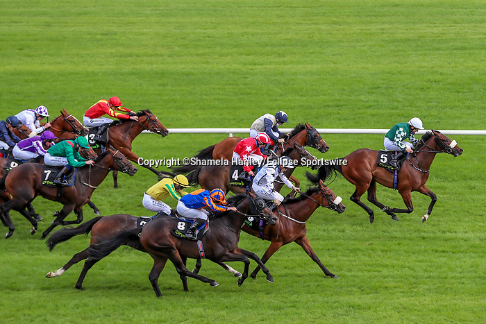 September 11, 2021: Real Appeal (Ger) #5, ridden by jockey Shane Foley holds on to win the Group 2 Boomerage Mile on the turf on Irish Champions Weekend at Leopardstown Racecourse in Dublin, Ireland on September 11th, 2021. Shamela Hanley/Eclipse Sportswire/CSM
