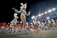 Desfile de carnaval Mancha Verde. Sambodromo. Sao Paulo. 2014. Foto de Levi Bianco.