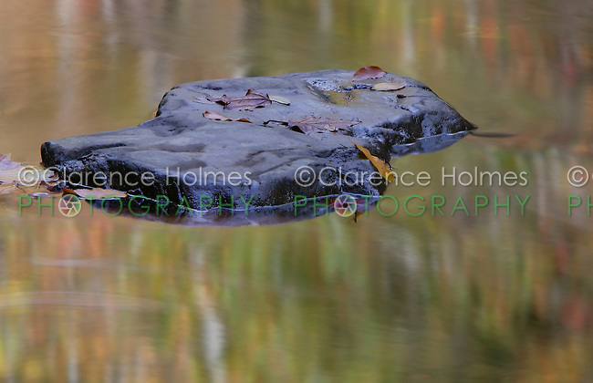 Rock, fall leaves, and reflections on the Middle Prong Little River, Great Smoky Mountains National Park