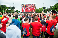 Thursday  16 June 2016<br /> Pictured: Fans celebrate Wales' first half lead during England v Wales Euro 2016 match at the Cardiff Fanzone <br /> Re: Wales Fans at the fanzone in Cardiff, Wales UK