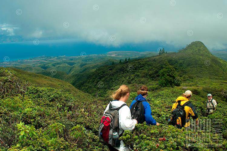 Hiking Down From Pu'uKukui/West Maui Watershed