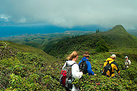 Hiking Down From Pu'uKukui/West Maui Watershed