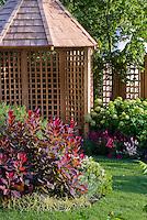 Garden gazebo building with hydrangeas & Cotinus Grace in spring, lawn grass, backyard pretty scene with fence