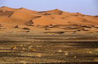 Natural patterns formed in large sand dunes, Erg Chebbi, Morocco.