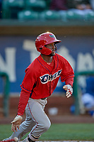 D'Shawn Knowles (32) of the Orem Owlz bats against the Ogden Raptors at Lindquist Field on June 22, 2019 in Ogden, Utah. The Owlz defeated the Raptors 7-4. (Stephen Smith/Four Seam Images)