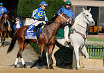 October 08,, 2021: ##2 Miss Interpret and jockey Jose Ortiz in the Darley Alcibiades Grade 1 $400,000 for trainer Todd Pletcher at Keeneland Racecourse in Lexington, KY on October 08, 2021.  Candice Chavez/ESW/CSM