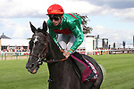 October 02, 2016, Chantilly, FRANCE -  Siljan's Saga with Pierre-Charles Boudot up at the Qatar Prix de'l Arc de Triomphe (Gr. I) at  Chantilly Race Course  [Copyright (c) Sandra Scherning/Eclipse Sportswire)