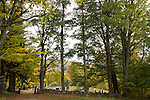 Cemetery, Shrewsbury, VT