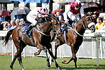 Horse Racing - The Curragh Racecourse - The National Stakes.The Mrs (John) Jessie Harrington trained Pathfork and ridden by Fran (F M) Berry win the National Stakes at the Curragh Racecourse.