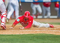 13 March 2016: St. Louis Cardinals infielder Dean Anna slides home safely during a pre-season Spring Training game against the Washington Nationals at Space Coast Stadium in Viera, Florida. The teams played to a 4-4 draw in Grapefruit League play. Mandatory Credit: Ed Wolfstein Photo *** RAW (NEF) Image File Available ***