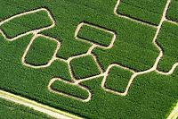4415/Maislabyrinth:DEUTSCHLAND, SCHLESWIG- HOLSTEIN 07.107.2004: Deutschland, Schleswig- Holstein, Hamwarde, Landstrasse, Mühlenstrasse, Labyrinth, Irrgarten, Mais, Maisfeld.<br />Die Landwirte in Deutschland haben ihre Maisanbauflaeche im Jahr 2004 nach neuesten amtlichen Schaetzungen auf 1.710.165 ha (2003: 1,636 Mio. ha) Silomais, Koernermais und Corn-Cob-Mix ausgeweitet. Im Vergleich zum vergangenen Jahr haben die Landwirte 6,4 Prozent mehr Silomais (fast 1,25 Mio. ha) angebaut. Den deutlichsten Zuwachs beim Silomaisanbau konnte Schleswig-Holstein mit 12,2 % auf knapp 97.000 ha verzeichnen. Die Bundeslaender Brandenburg und Mecklenburg-Vorpommern erlebten im Jahr 2004 mit jeweils ueber 30 % Zuwachs auf 21.105 ha und 6.873 ha eine deutliche Ausweitung des Koernermais- und CCM-Anbaus
