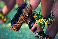 Close-up of male hula dancer's hands, with colorful wrist leis, holding feather decorated gourd rattle. A celebration of Prince Kuhio Day at Kuhio Elementary  School.