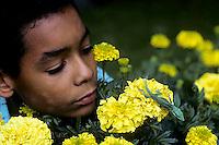 1R06-092z  Green Anole -jumping from marigold flower - Anolis carolinensis