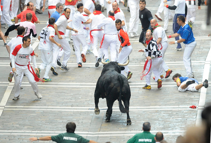Participants run with El Pilar fighting bulls during the sixth San Fermin Festival´s running of the bulls, on July 12, 2013, in Pamplona, Basque Country. On each day of the eight San Fermin festival days six bulls are released at 8:00 a.m. (0600 GMT) to run from their corral through the narrow, cobbled streets of the old navarre town over an 850-meter (yard) course. Ahead of them are the runners, who try to stay close to the bulls without falling over or being gored. (Ander Gillenea / Bostok Photo)