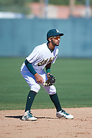 Oakland Athletics shortstop Yerdel Vargas (12) during an Instructional League game against the Cincinnati Reds on September 29, 2017 at Lew Wolff Training Complex in Mesa, Arizona. (Zachary Lucy/Four Seam Images)