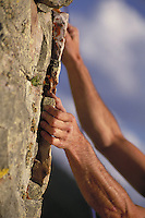 Man's hands grabbing crevice in rock while rock climbing in the Rocky Mountains of Colorado. Steve Holmes (MR 496). Colorado.