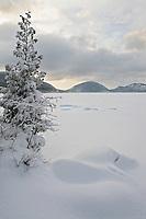 Winter at Eagle Lake  #A22