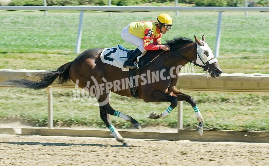 Furrariat winning at Delaware Park on 9/15/10