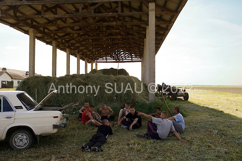 Fertesholmash, Ukraine.June 4, 2005 ..Workers resting after gathering hey for animals in a field that borders both Romania and Hungary. The field was once a great collective farm but is now divided into smaller private fields. ..During the presidential elections in December 2004 the village voted for Yanakovich on the first round due to political pressures but for Yuschenko in the final round.