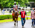 JUNE 03, 2020 : Garropolo in the paddoc kfor $64,000 Maiden Special Weight, fortwo year ols going 5 furlongs, at Belmont Park, Elmont, NY.  Sue Kawczynski/Eclipse Sportswire/CSM
