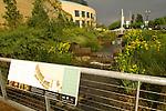 Stormwater Facility, The Rainwater Garden, Oregon Convention Center, Portland Oregon.