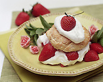 Rich Old-Fashioned Shortcake. Portfolio only