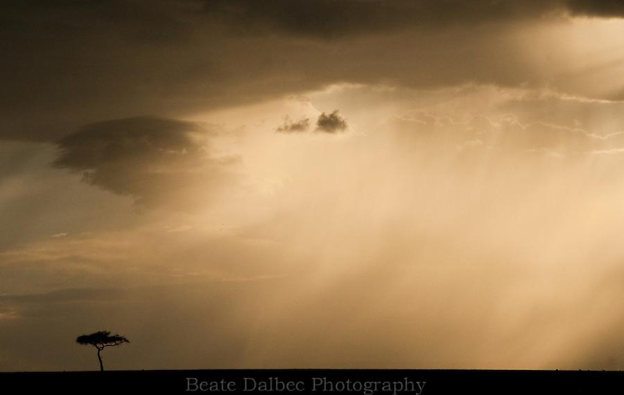 Storm approaching over the Masai Mara, Kenya