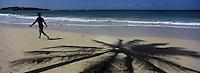 France/DOM/Martinique/env de Sainte-Anne: Plage des Salines-  Mer des  Caraïbes en fond le rocher du Diamant