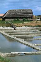 Europe/France/Pays de la Loire/85/Vendée/Marais breton-vendéen/Centre du Daviaud/La Barre-de-Monts: Ecomusée de la Vendée - marais salants et salorge