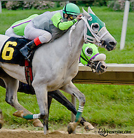 Sergeant Pepper MHF winning at Delaware Park on 6/6/13