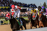 TORONTO, ON - JULY 03:   Sir Dudley Digges, #5, ridden by Julien Leparoux   runs to victory at Queen's Plate Day at Woodbine Race Course on July 3, 2016 in Toronto, Ontario. (Photo by Victor Biro/Eclipse Sportswire/Getty Images)