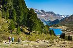 Oesterreich, Ost-Tirol: Wandern an Obersee im Defereggental unterhalb des Staller Sattel | Austria, East-Tyrol: hiking near lake Obersee in Defereggen Valley, below Staller Sattel passroad