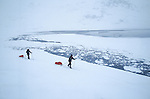 Ski sur la banquise d'un fjord aec des icebergs. Groënland (côte Est). Région d'Angmagssalik (Ammasalik ou Tassilaq). Ski on the ice of the fjord. Greenland (East coast).