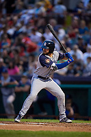 Brooklyn Cyclones center fielder Ross Adolph (29) at bat during a game against the Tri-City ValleyCats on August 21, 2018 at Joseph L. Bruno Stadium in Troy, New York.  Tri-City defeated Brooklyn 5-2.  (Mike Janes/Four Seam Images)