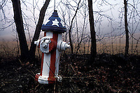 Fire hydrant painted patriotic red, white and blue<br />